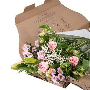 next letterbox flowers