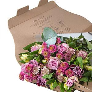 serenata letterbox flowers