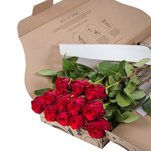 letterbox roses by post